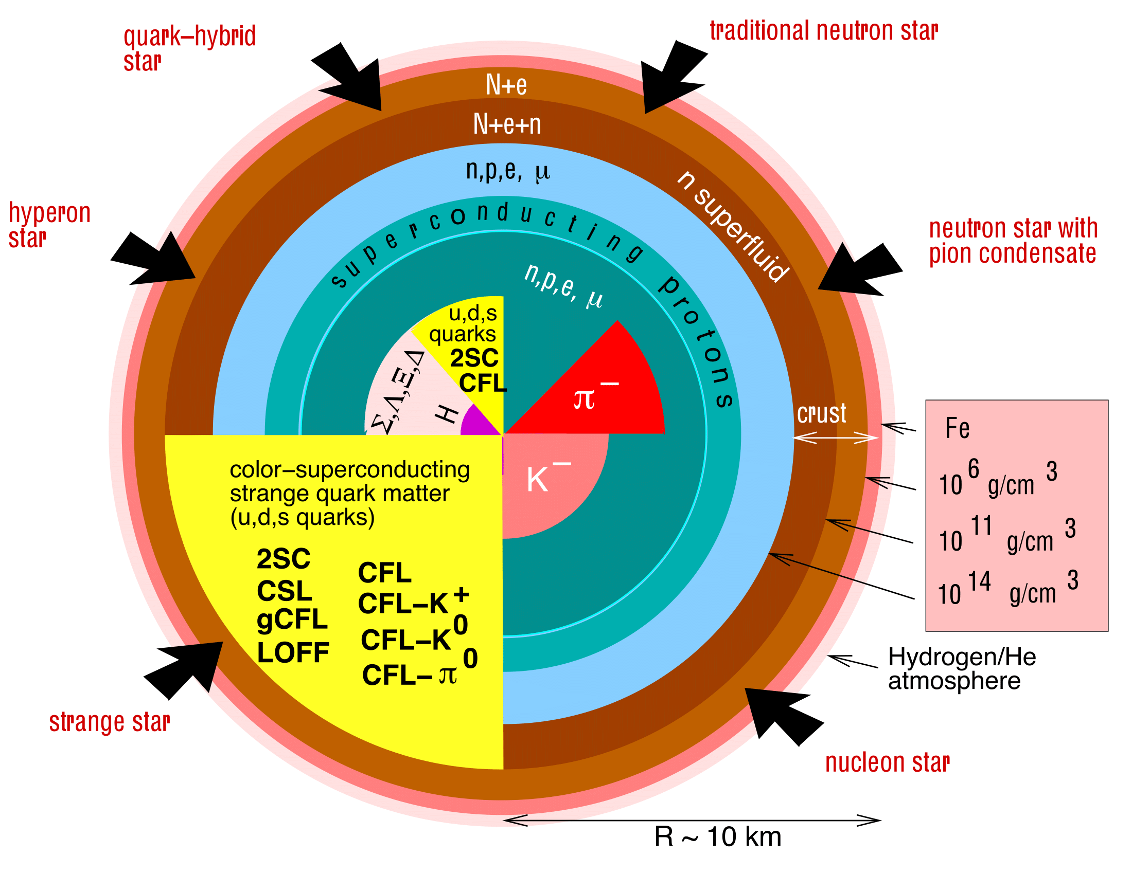 The picture illustrates some of the possible forms of matter existing inside of neutron stars. It has been created by the physicist Fridolin Weber (http://www.physics.sdsu.edu/fweber/) an expert on the equation of state of dense stellar matter. Image Credit: Progress in Nuclear and Particle Physics